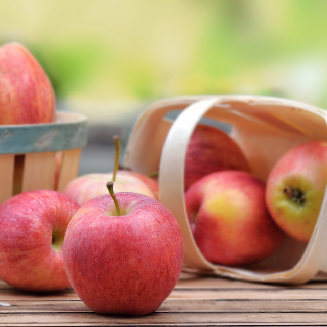 """""""group of red apples in little basket on a wooden table in garden"""" stock image"""