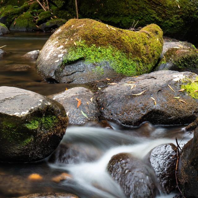 """The Otways - Water Over Rocks"" stock image"
