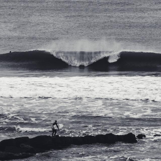 """SURF Slab"" stock image"