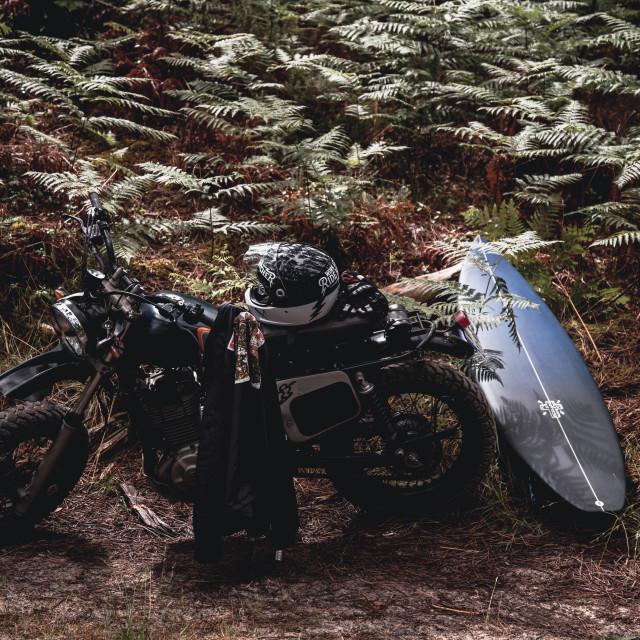 """Moto"" stock image"