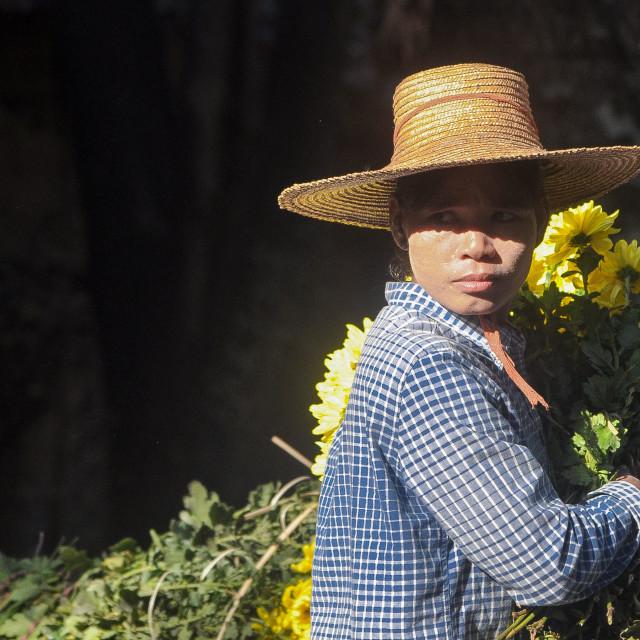 """""""Flower seller"""" stock image"""