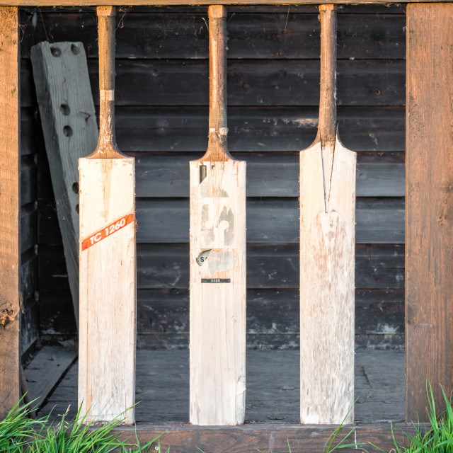 """""""Wicket Fence"""" stock image"""