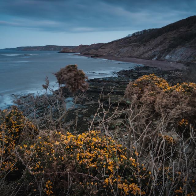 """A murky dusk at Cornelian Bay, North Yorkshire"" stock image"