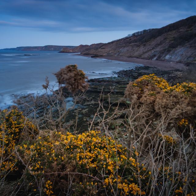 """""""A brooding dusk over Cornelian Bay"""" stock image"""