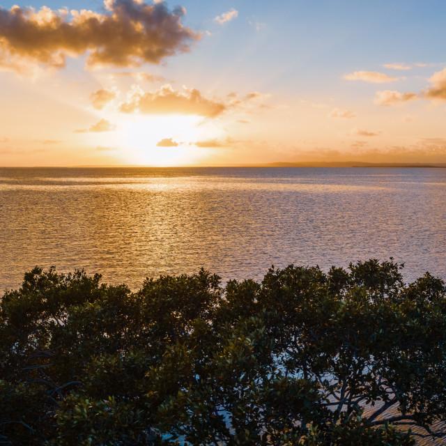"""""""Wellington Point - Sunrise"""" stock image"""