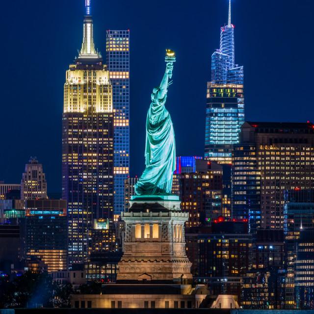 """Ladies and Gentlemen, i give you, New York City"" stock image"