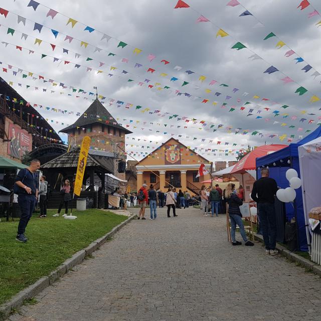 """Lutsk Food Fest"" stock image"