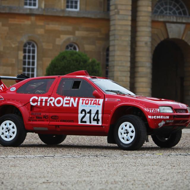 """""""Citroen Desert rally raider"""" stock image"""