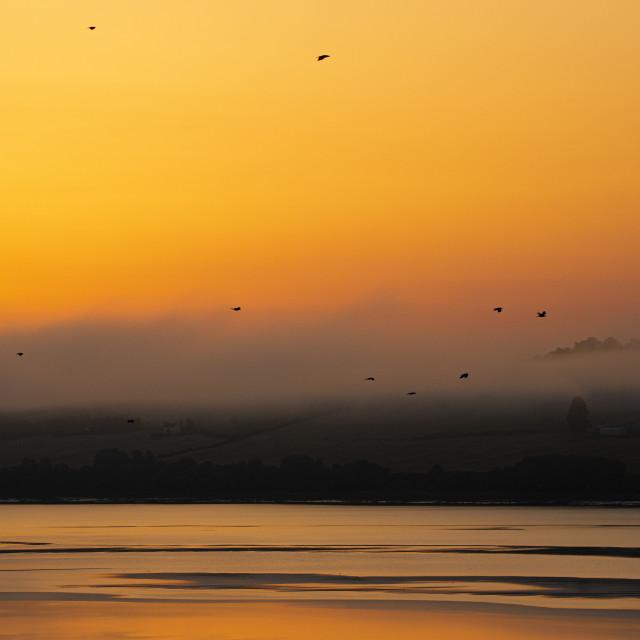 """""""Sunrise in Ardullie, Scottish Highlands"""" stock image"""
