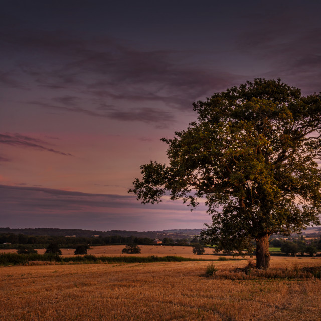 """""""Evening View"""" stock image"""
