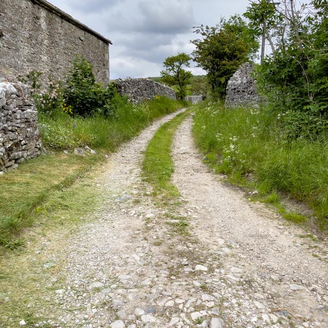 """Grassington, Track, Lane. Yorkshire Dales."" stock image"