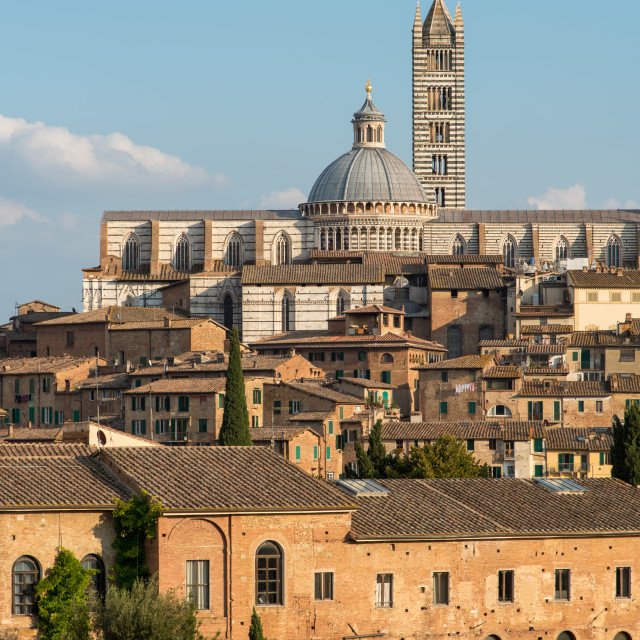 """""""Medieval town of Siena and the Duomo di siena cathedral, Tuscany, italy"""" stock image"""