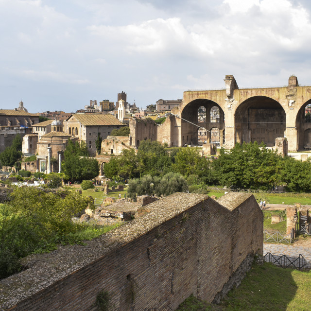 """""""From the Palatine Hill"""" stock image"""