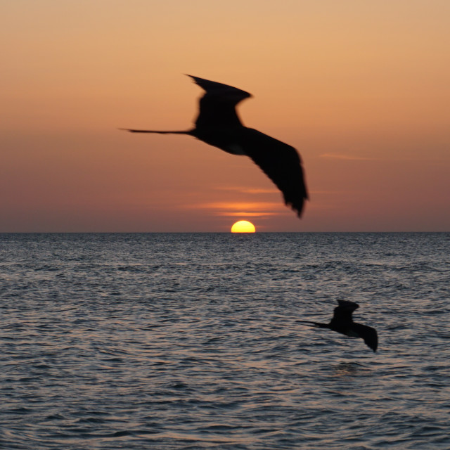 """Sunset at Holbox"" stock image"