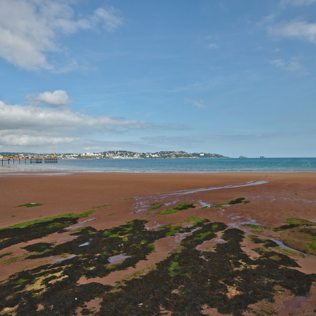 """""""Paignton beach"""" stock image"""