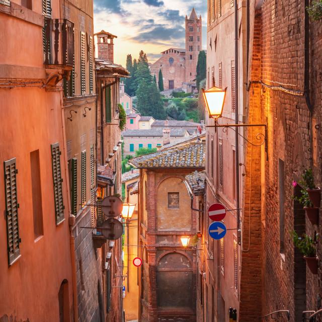 """Siena, Tuscany - Downtown and Santa Maria dei Servi Church"" stock image"
