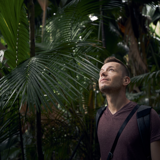 """""""Man with backpack discovering jungle"""" stock image"""