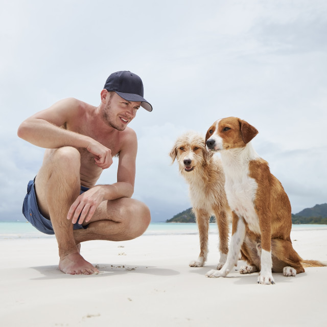 """""""Happy man with two dogs on beach"""" stock image"""