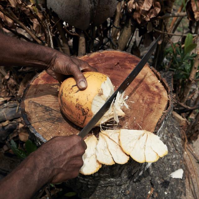 """Man cuttiing coconut by machete"" stock image"