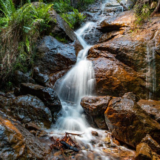 """Peace Waterfall"" stock image"