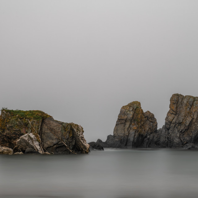 """""""Salmon Cove on a foggy day"""" stock image"""