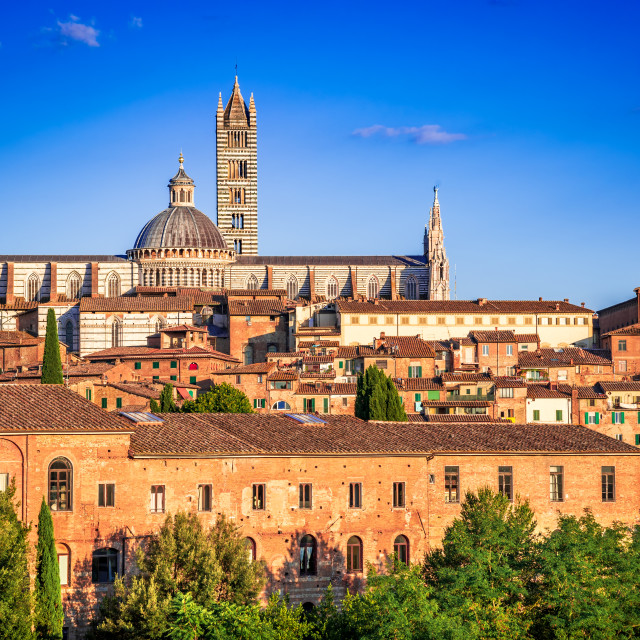 """""""Siena, Tuscany, Italy - Dome sunset with blue sky"""" stock image"""
