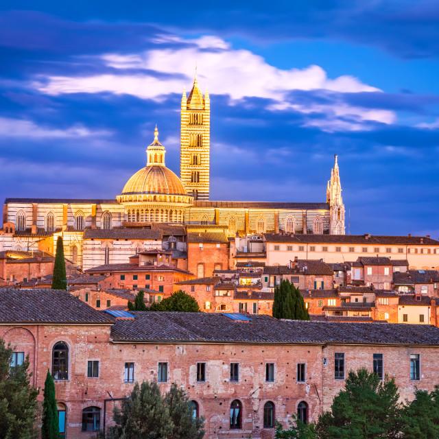 """Siena, Tuscany, Italy - Night scenic Siena Cathedral"" stock image"