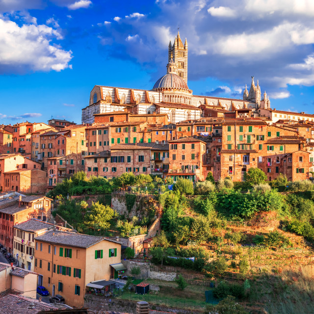 """""""Siena, Tuscany, Italy - Torre del Mangia and the Dome"""" stock image"""