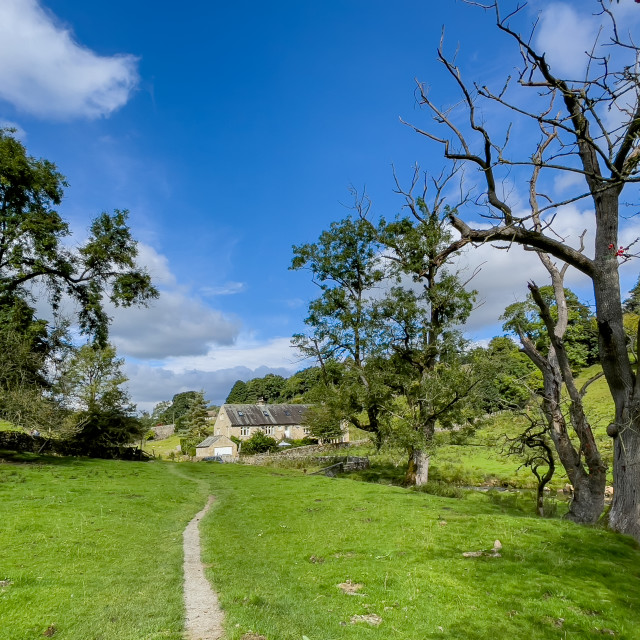 """""""Hebden Footpath, Low Green."""" stock image"""