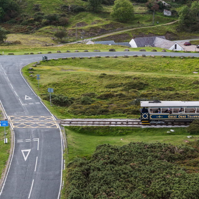 """""""Tram on the Great Orme crossing the road"""" stock image"""