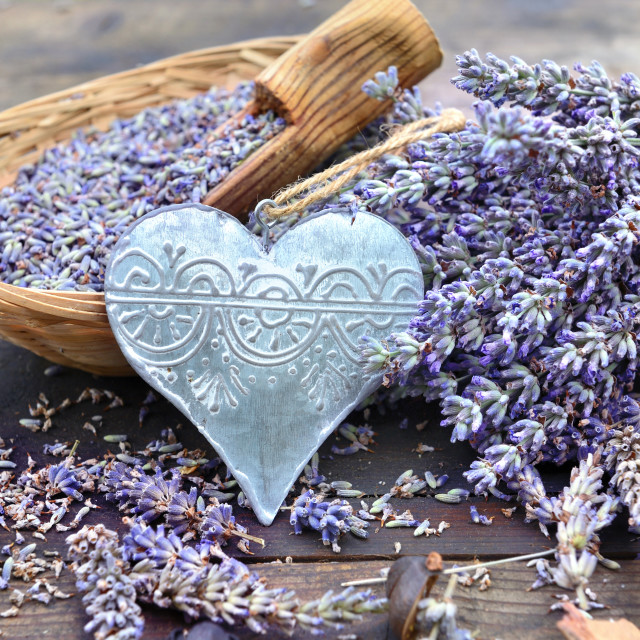 """""""decorative metal heart and little basket full of lavender on wooden table"""" stock image"""