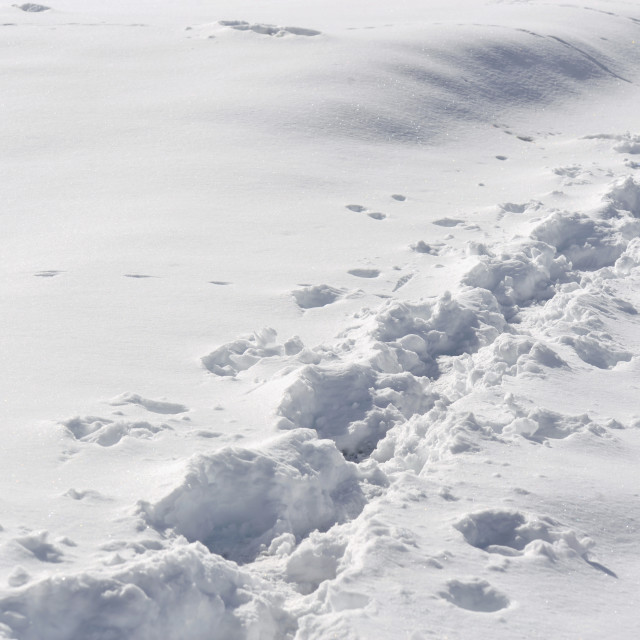 """""""close up on tracks of a hiker in fresh snow"""" stock image"""