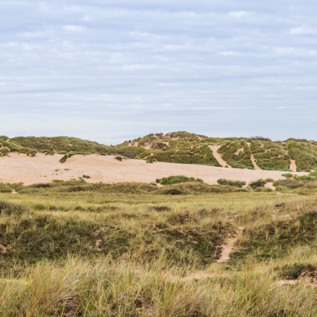 """""""Sand dunes at the edge of Formby beach"""" stock image"""