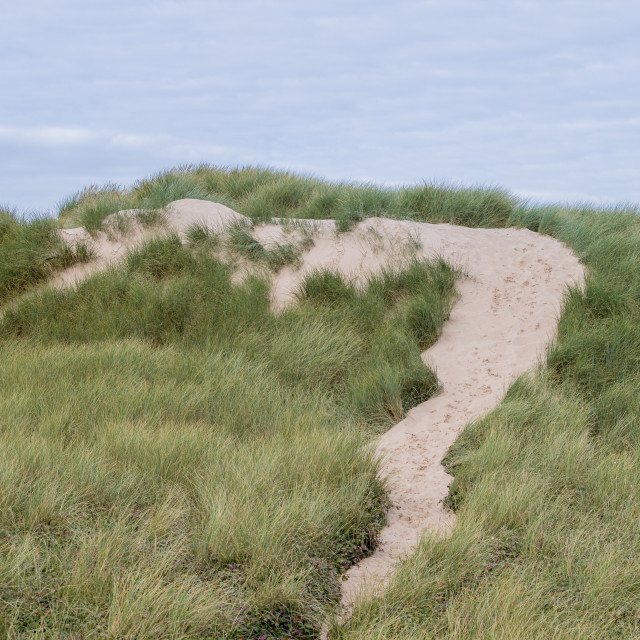 """""""Foot prints over Formby sand dunes"""" stock image"""