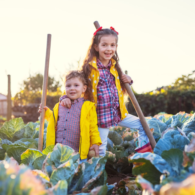 """""""Farmer boy and girl, brother and sister working in a garden of c"""" stock image"""