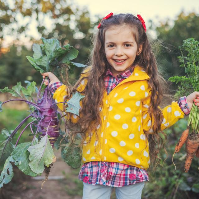 """""""Little girl gardener in vegetables garden holding fresh biologic"""" stock image"""