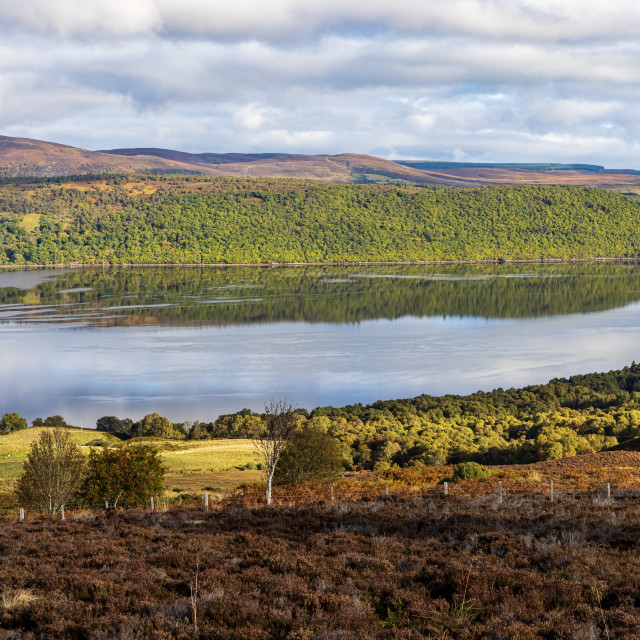 """""""View across Dornoch Firth from Struie Hill"""" stock image"""