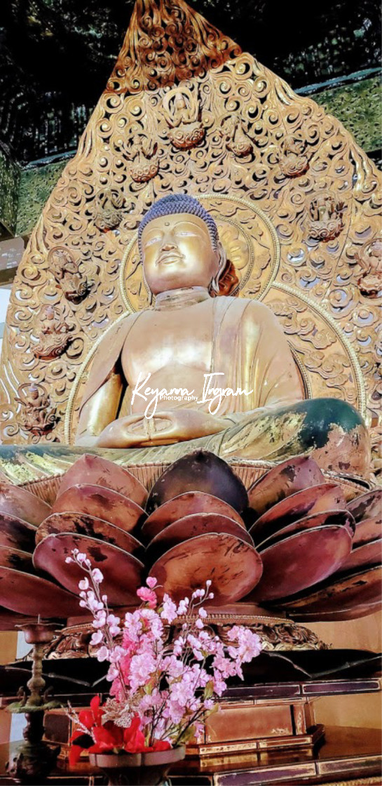 """""""Byodo-In Temple"""" stock image"""
