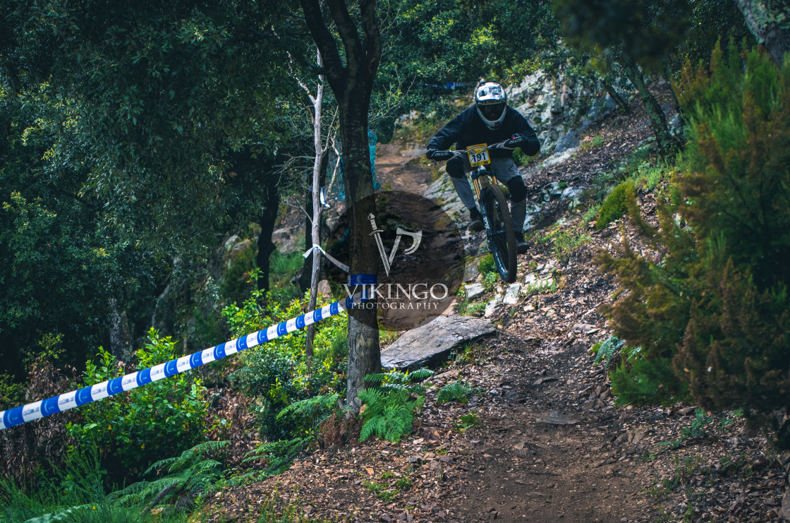 """Campionato,Racing,Mountanbike,Downhill,Championship"" stock image"