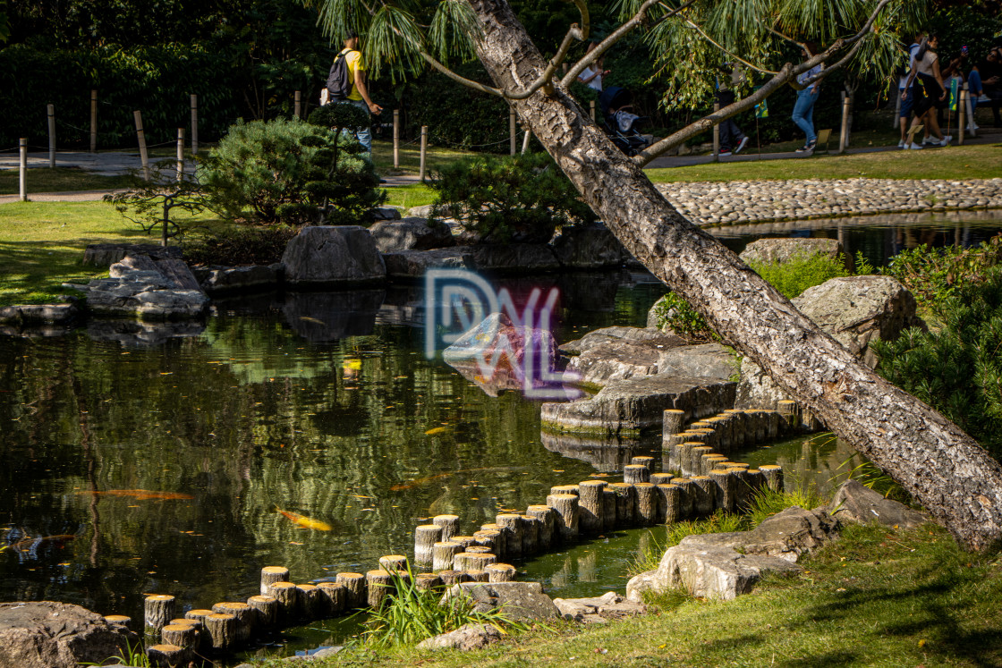 """""""Afternoons at Holland Park"""" stock image"""