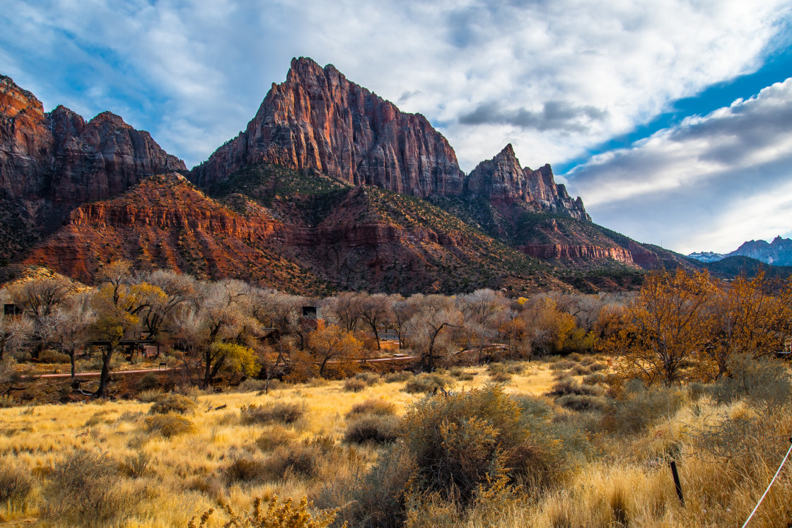 """""""Zion National Park"""" stock image"""