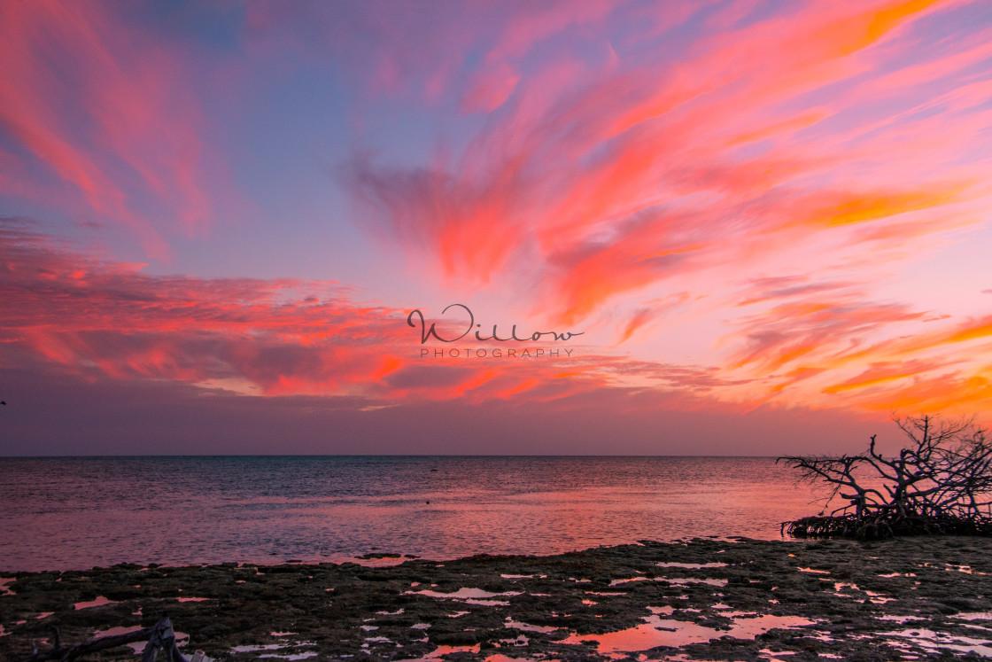 """""""Sunset on Big Pine Key (2)"""" stock image"""
