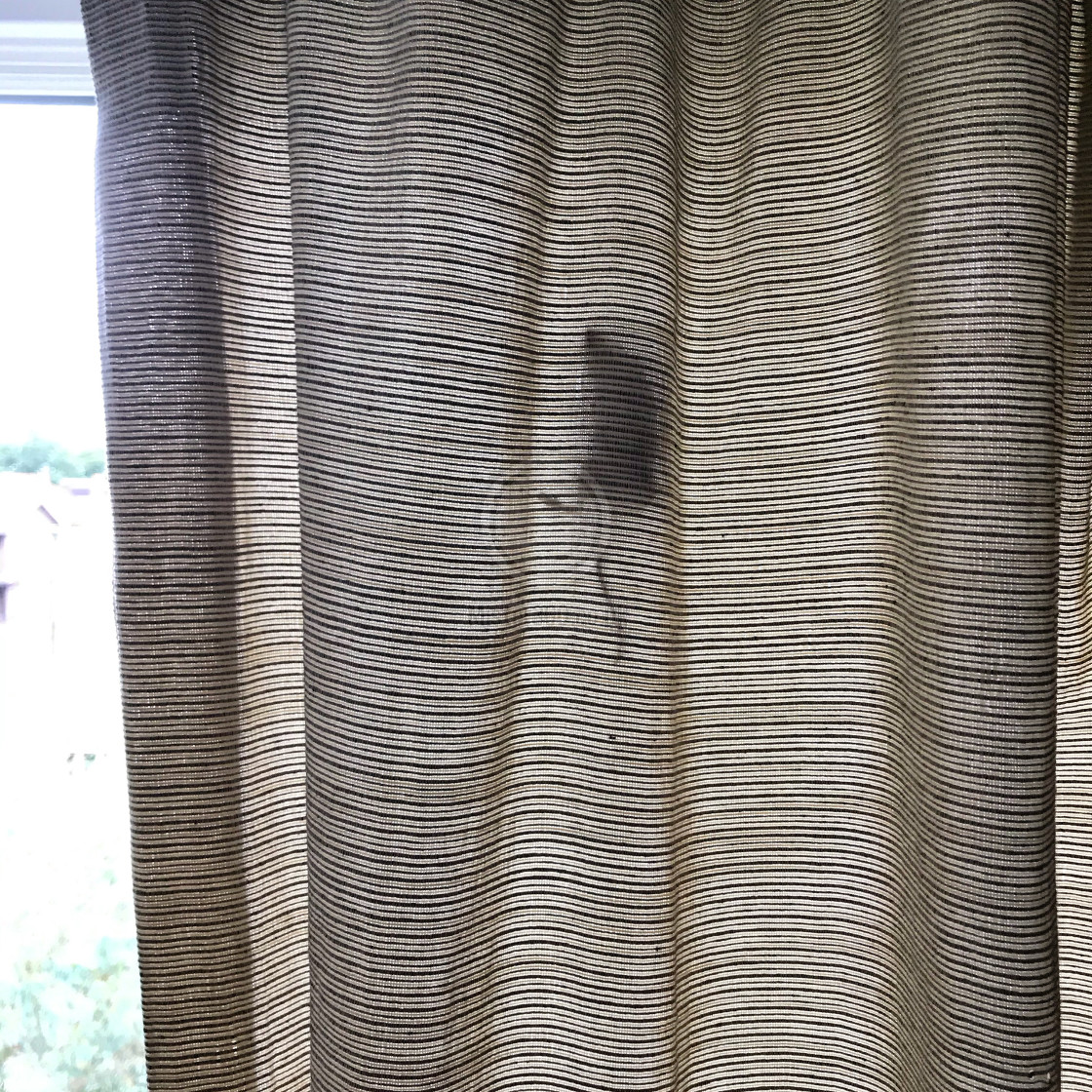 """""""Mouse silhouette in curtain"""" stock image"""