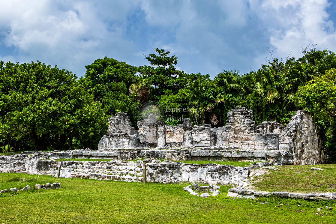 """""""Archaeological zone """"El Rey"""" II"""" stock image"""