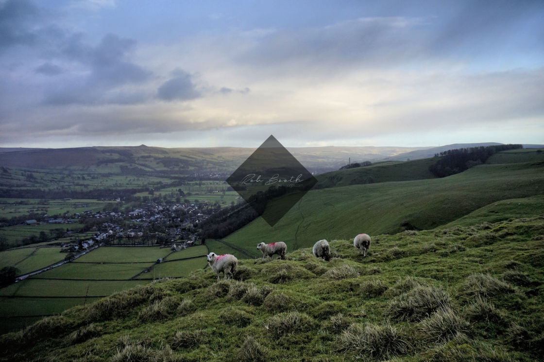 """Sheep over Castleton."" stock image"