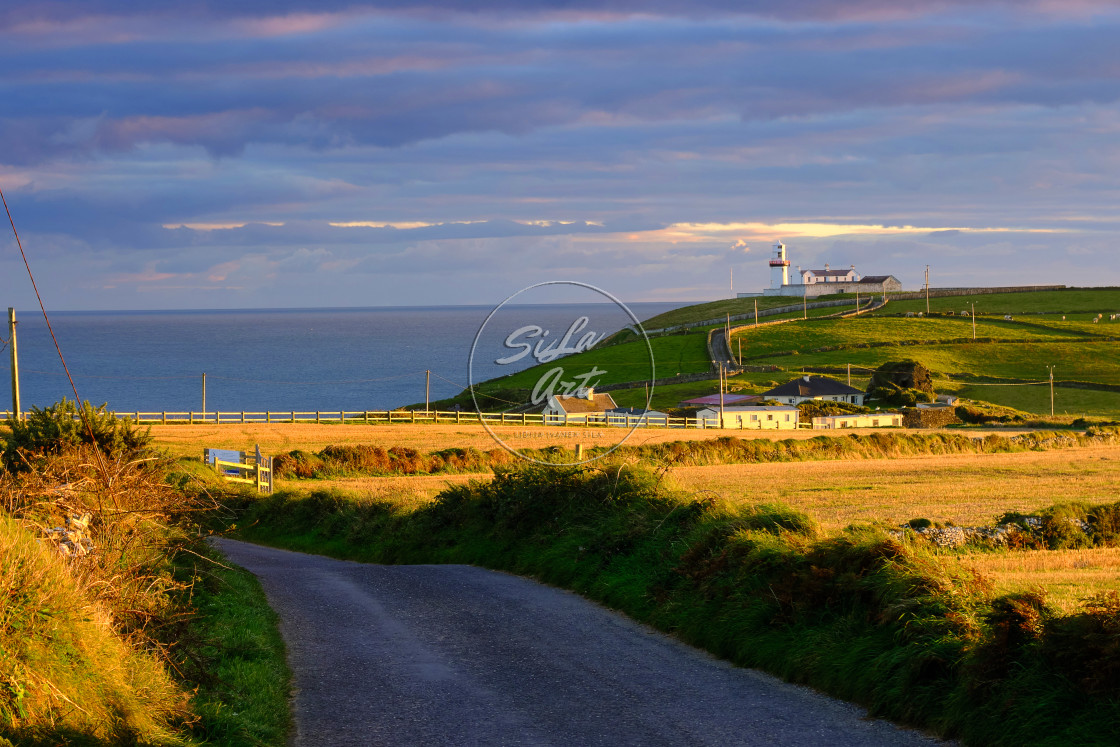 """""""Galley Head"""" stock image"""