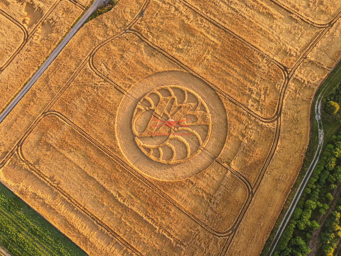 """""""Hackpen Hill Crop Circle, Wiltshire"""" stock image"""