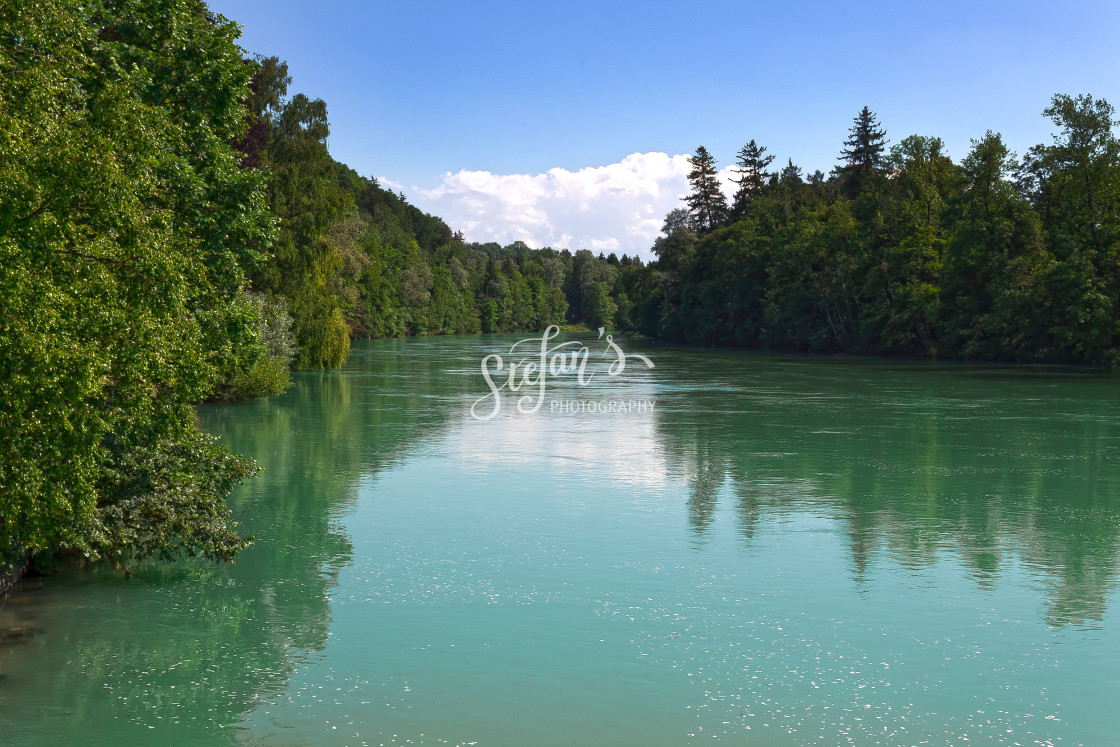"""""""river turquoise with trees"""" stock image"""
