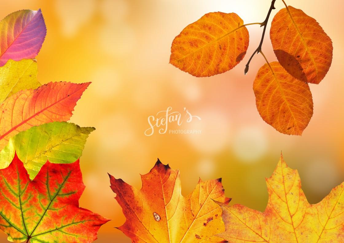 """""""autumn background"""" stock image"""