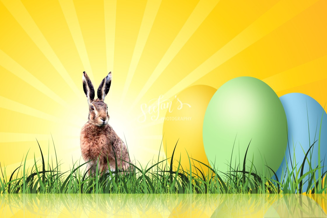 """""""bunny with great easter eggs"""" stock image"""